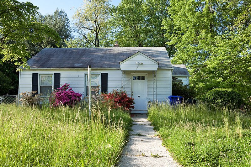 Homeowner Tips to Control Insects In and Around Your Home